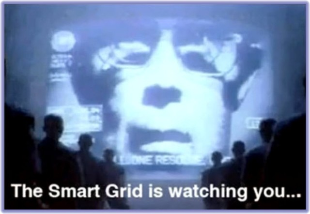 Smart Grid Watching You