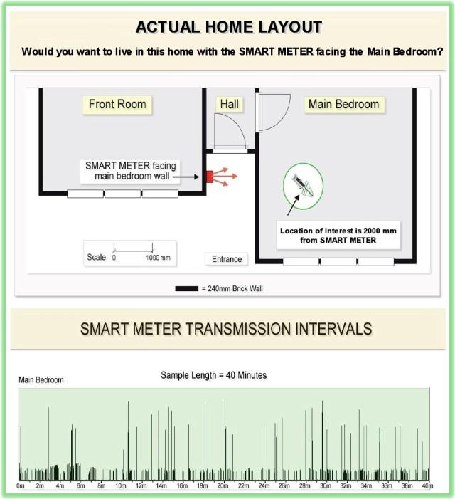 Smart Meter Home