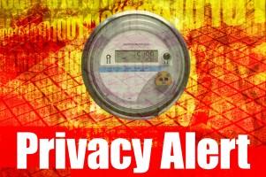 Smart Meter Privacy Alert