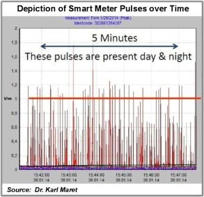 Smart Meter Pulses