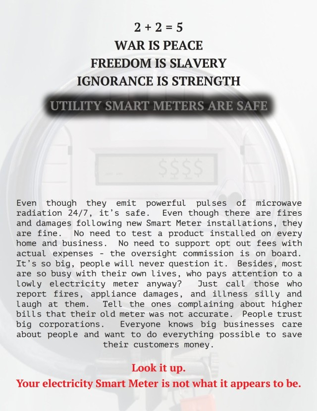 Smat Meters Are (not) Safe