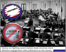 Fighting Smart Meters with Politicians