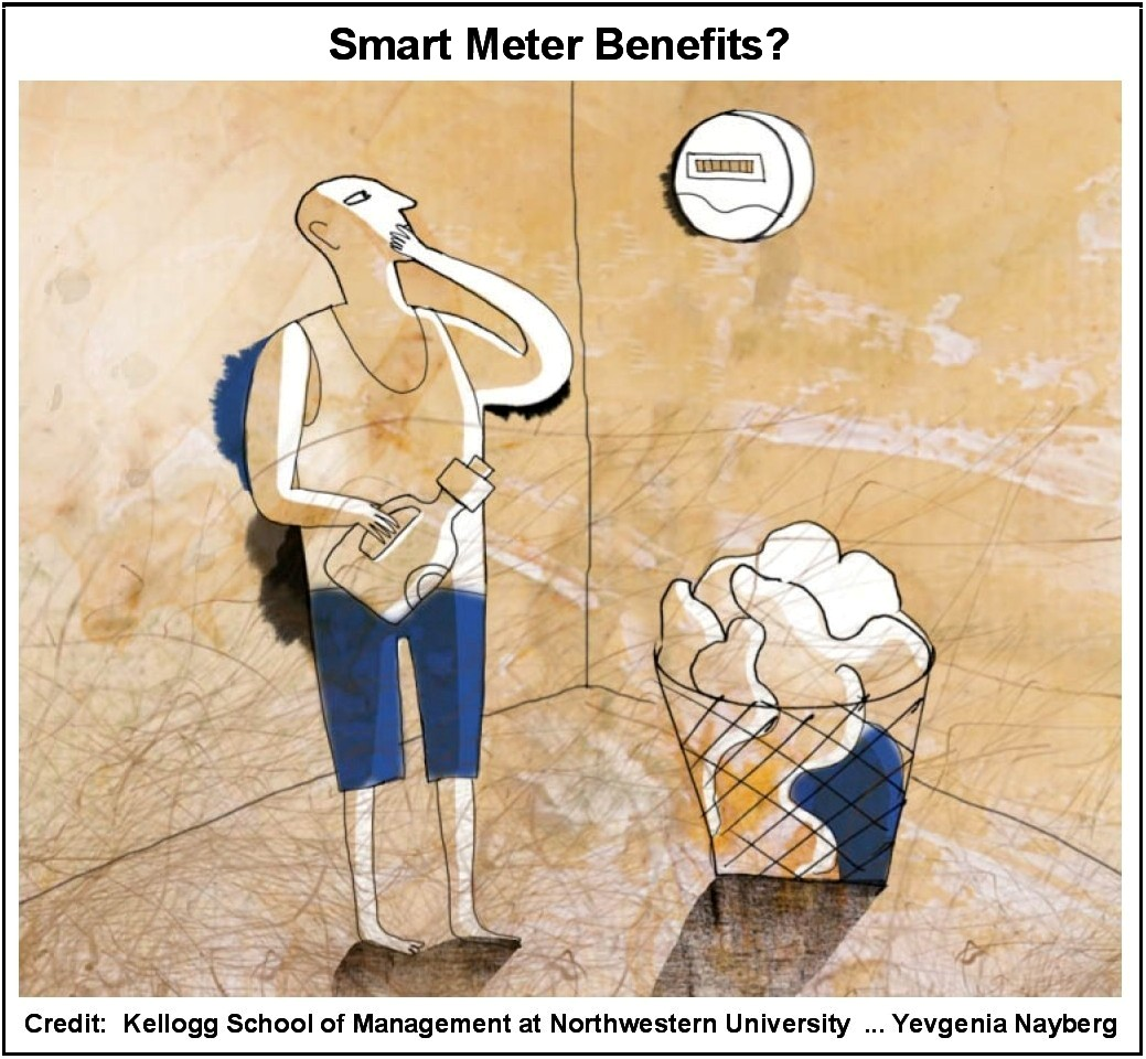 Consumers and Environment Unlikely to Benefit from Smart