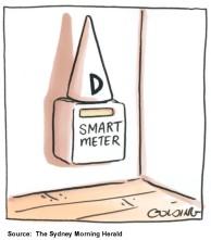 Smart Meter Dunce