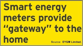 EY Smart Meter Gateway Quote