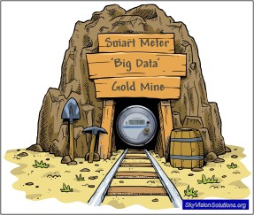 Smart Meter 'Big Data' Gold Mine
