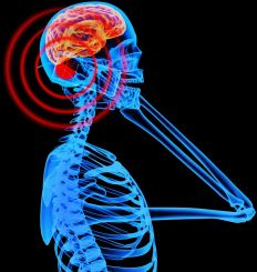 Cell Phone Exposure to Brain