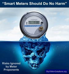 Smart Meters Should Do No Harm Rev